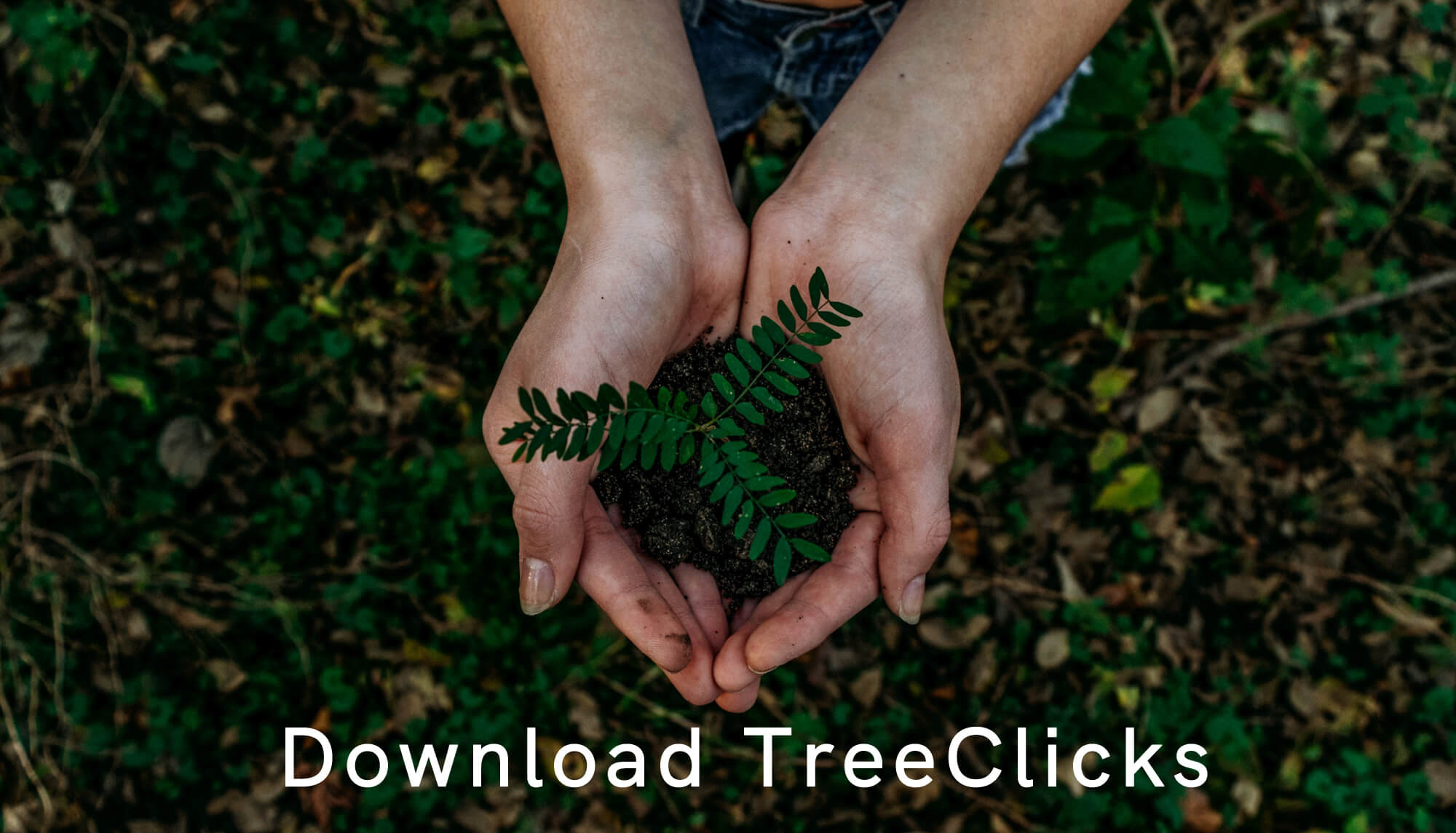 Download en installeer TreeClicks